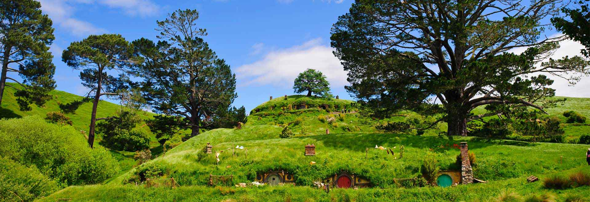 Hobbiton Movie Set Tours from Matamata or The Shires Rest