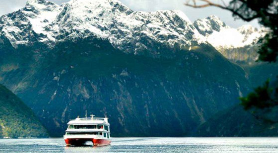 Milford Sound Scenic Cruise and International Buffet Or Indian Buffet Or Thali 01:30 PM Southern Discoveries