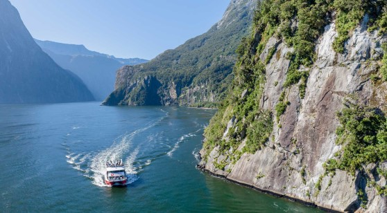 Milford Sound Nature Cruises and International Buffet/Indian Buffet/Thali 10:30 AM - Southern Discoveries