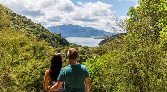 Waimangu Valley Walk & Hike
