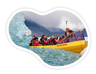 New Zealand Glacier Tour